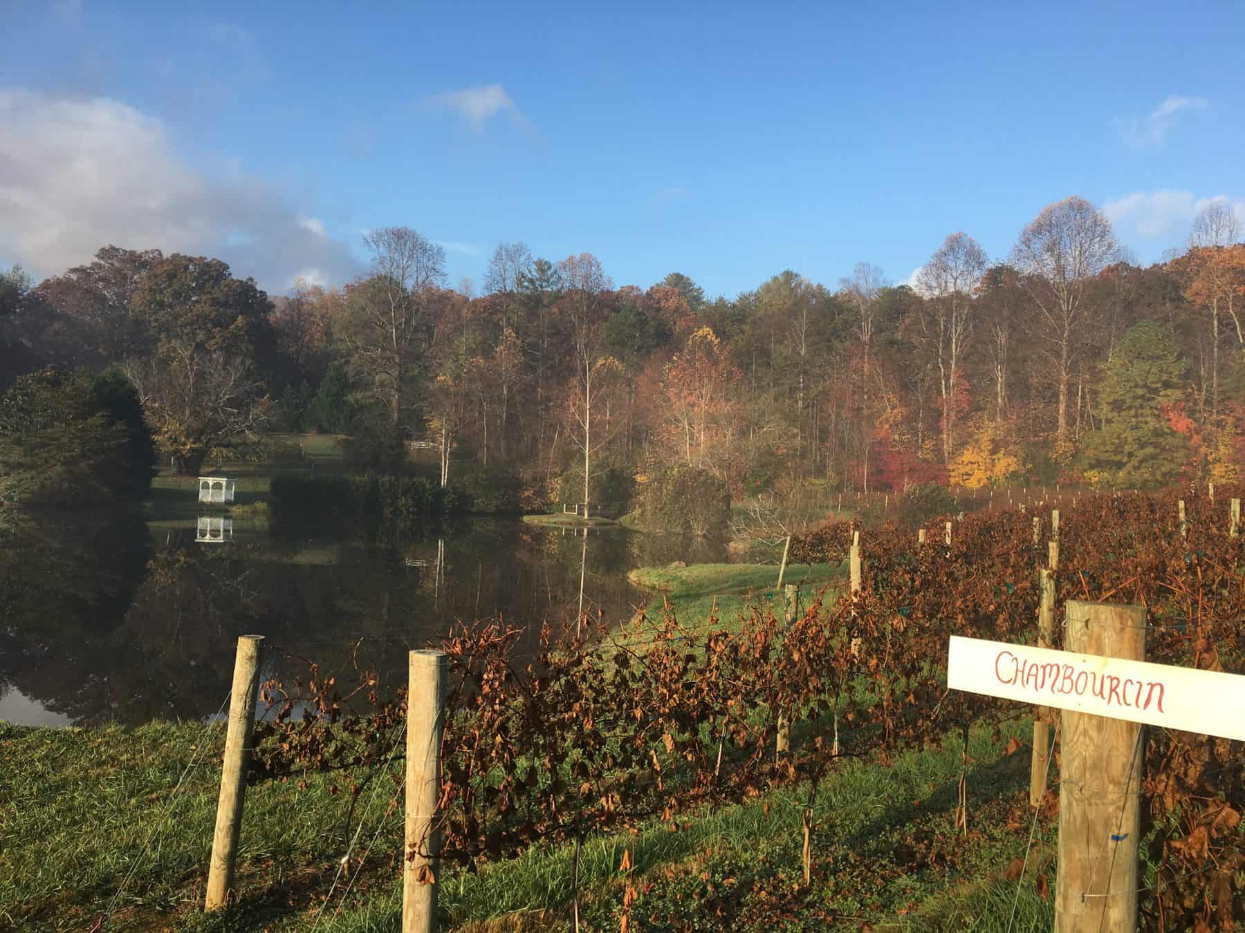 Beautiful fall day at Crane Creek Vineyards