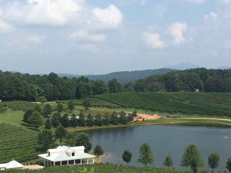 Frogtown Cellars, a Dahlonega winery