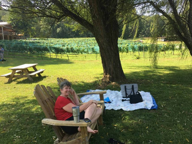 Waiting for the eclipse at Hightower Creek Vineyards