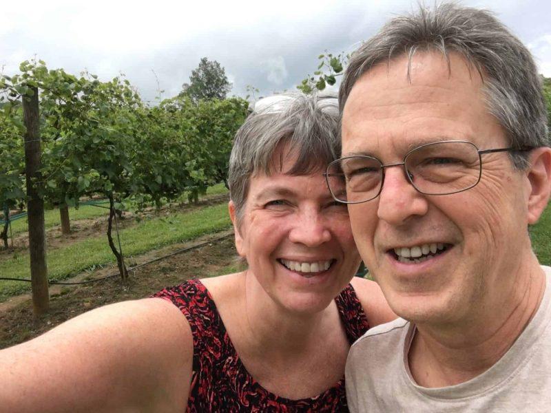 serrenberry vineyards, near Blue Ridge
